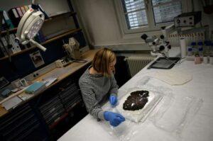 El deshielo de los glaciares de los Alpes permite hallar tesoros ocultos durante milenios