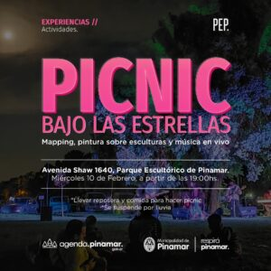PICNIC BAJO LAS ESTRELLAS