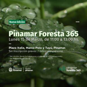 PINAMAR FORESTA 365