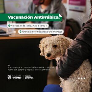 Lee más sobre el artículo VACUNACIÓN ANTIRRÁBICA
