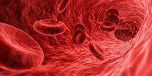 Lee más sobre el artículo Día Mundial de la Trombosis